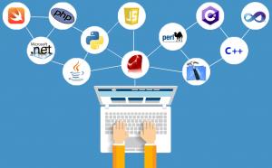 Nghề lập trình website là gì?
